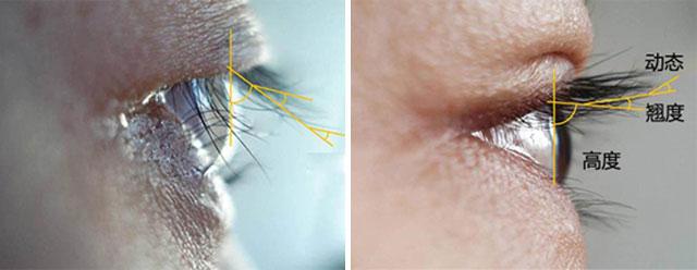 专业眼部设计